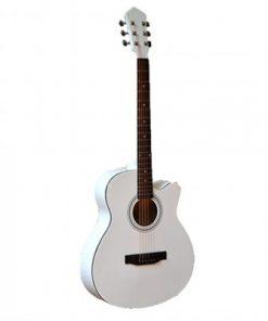 dan-guitar-caravan-hs-4010-nat
