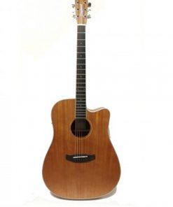 dan-guitar-tanglewood-twu-dce