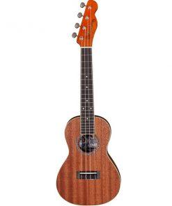 Đàn ukulele concert